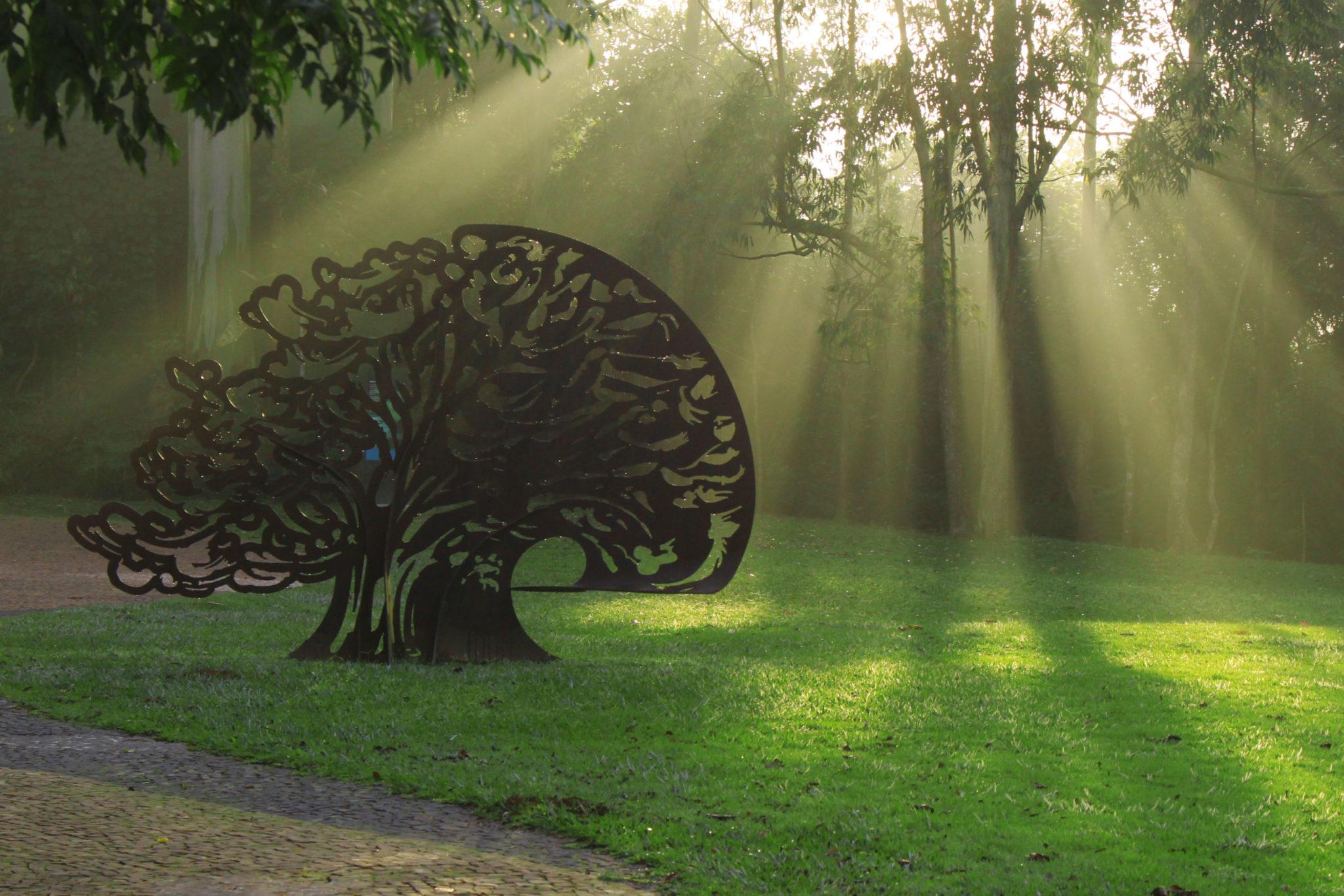 Compromisso com a Sustentabilidade no Cerejeiras