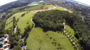 Sustentabilidade e Meio Ambiente no Cerejeiras
