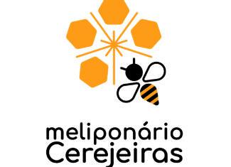 Meliponário Cerejeiras e a importância das abelhas.